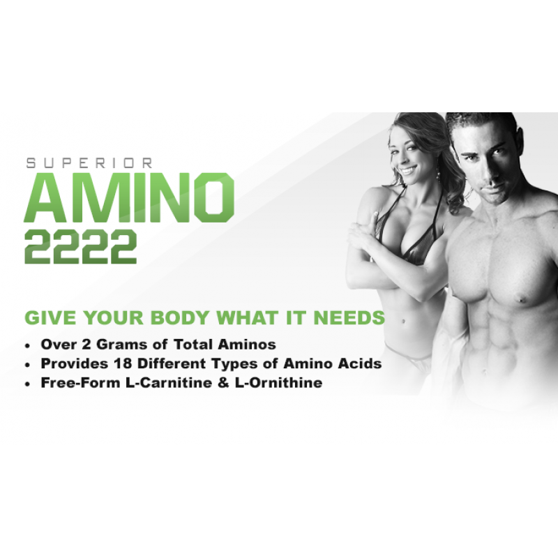 Optimum Nutrition Amino 2222 - 320 Tablets